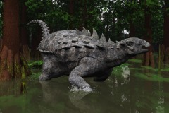 POLACANTHUS IN THE SWAMP