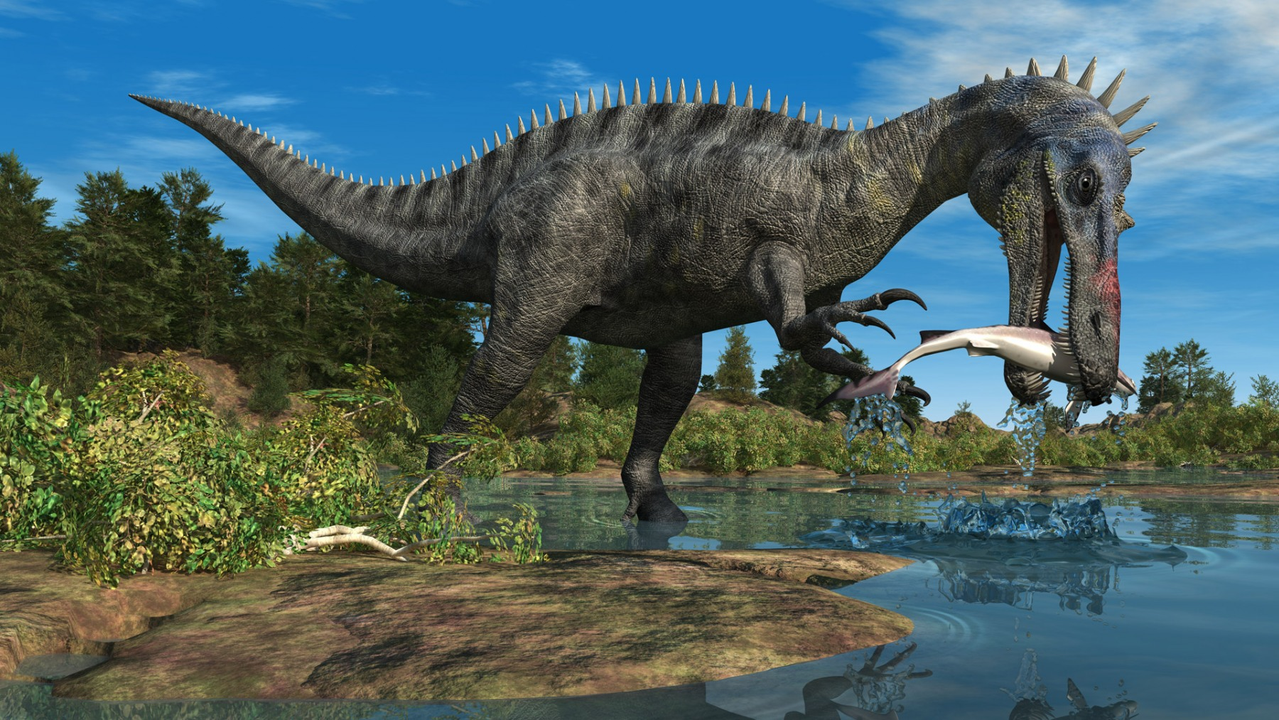 SUCHOMIMUS FISHING