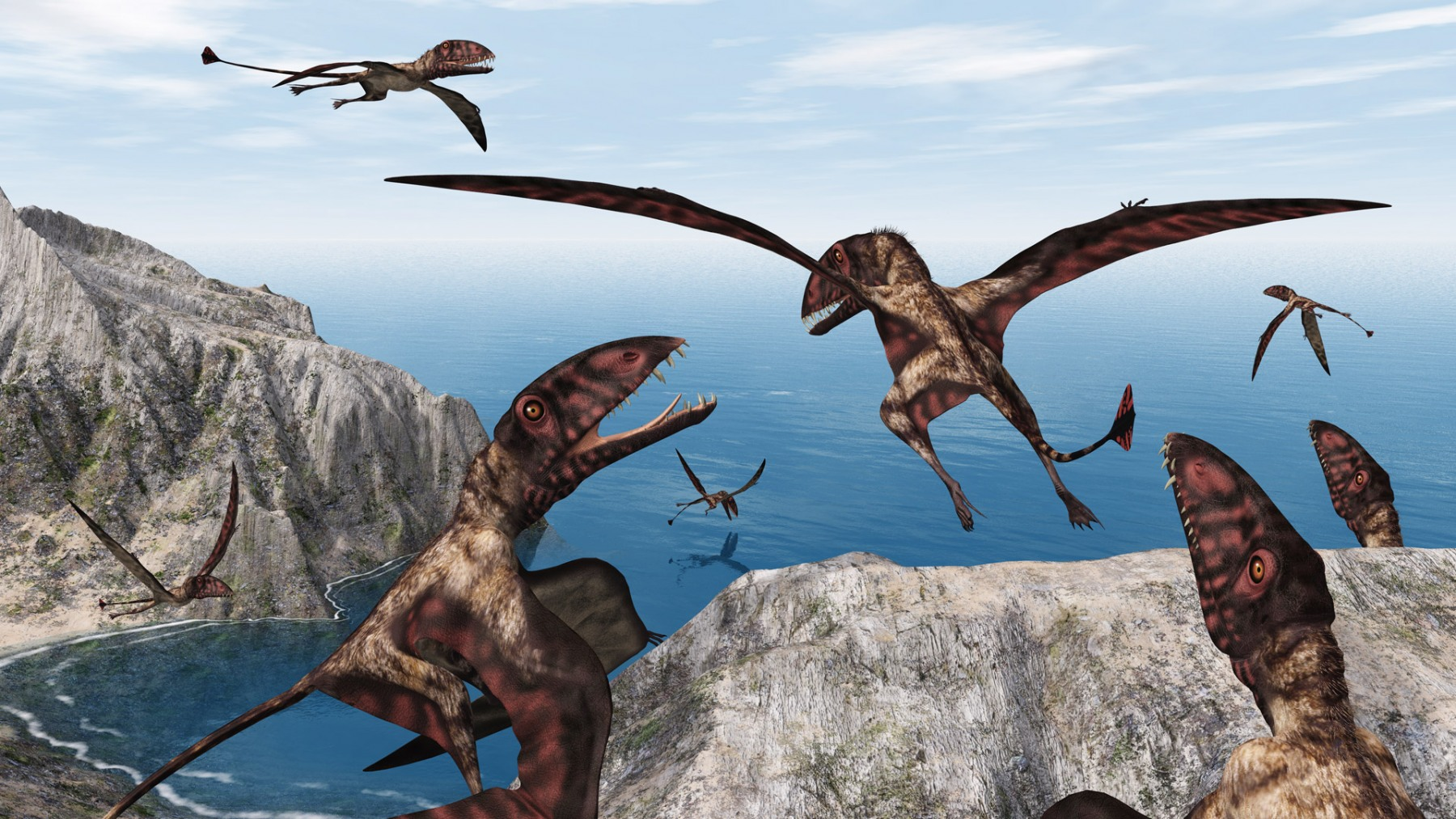 DIMORPHODON FLYING