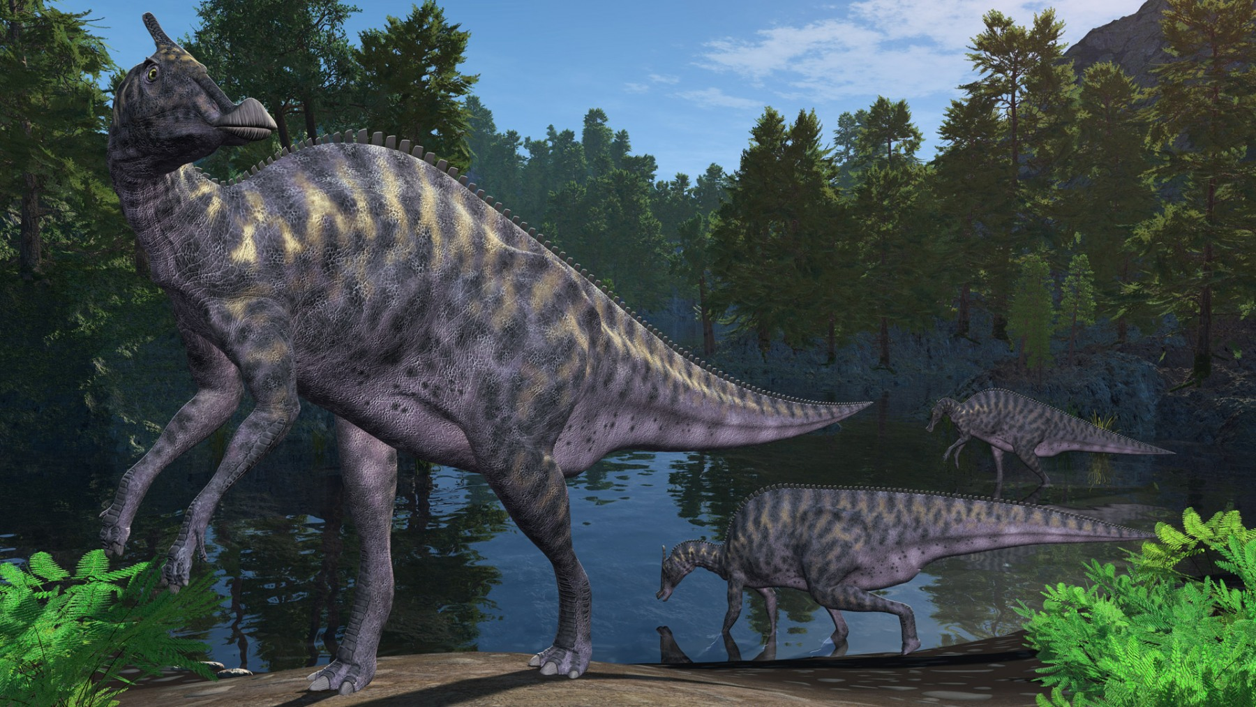 SAUROLOPHUS AT A LAKE