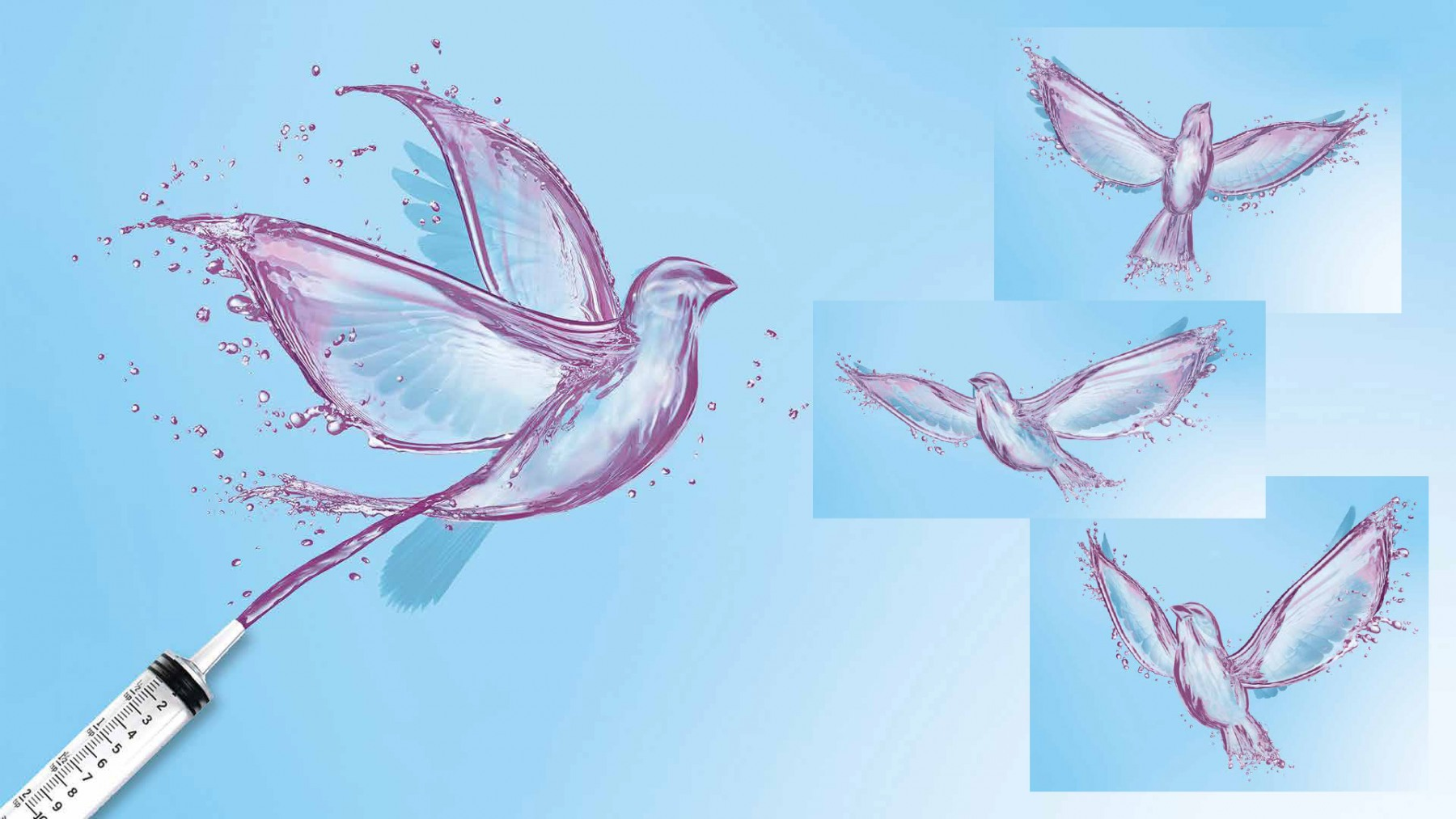 LIQUID BIRDS