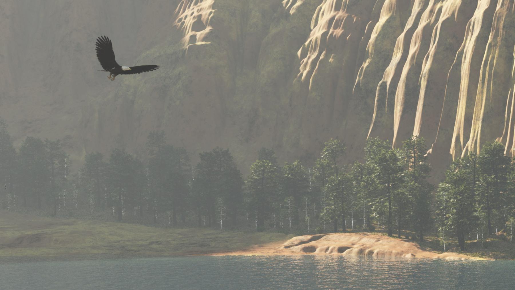 EAGLE (DETAIL)