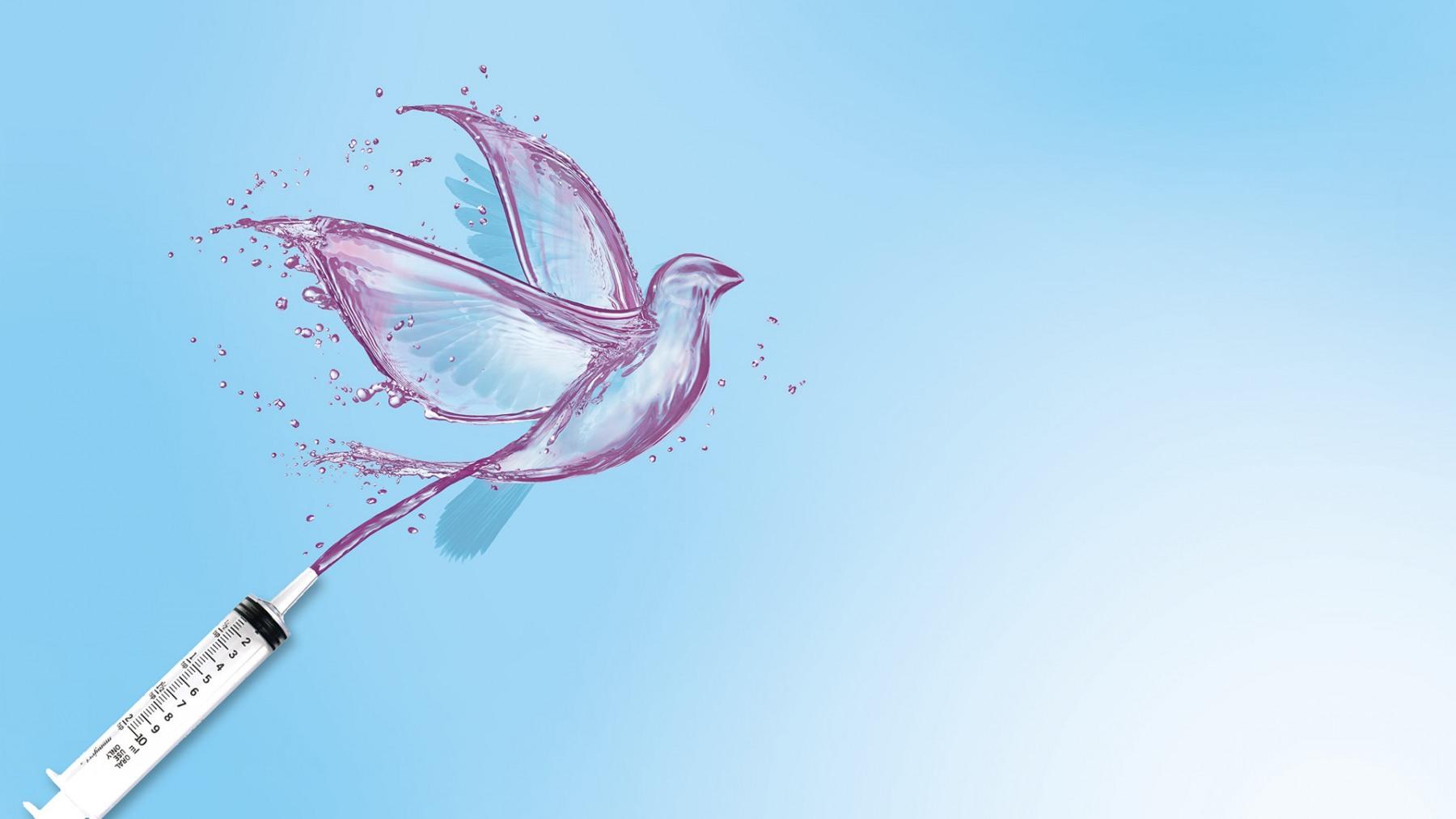 Main Free Bird Image