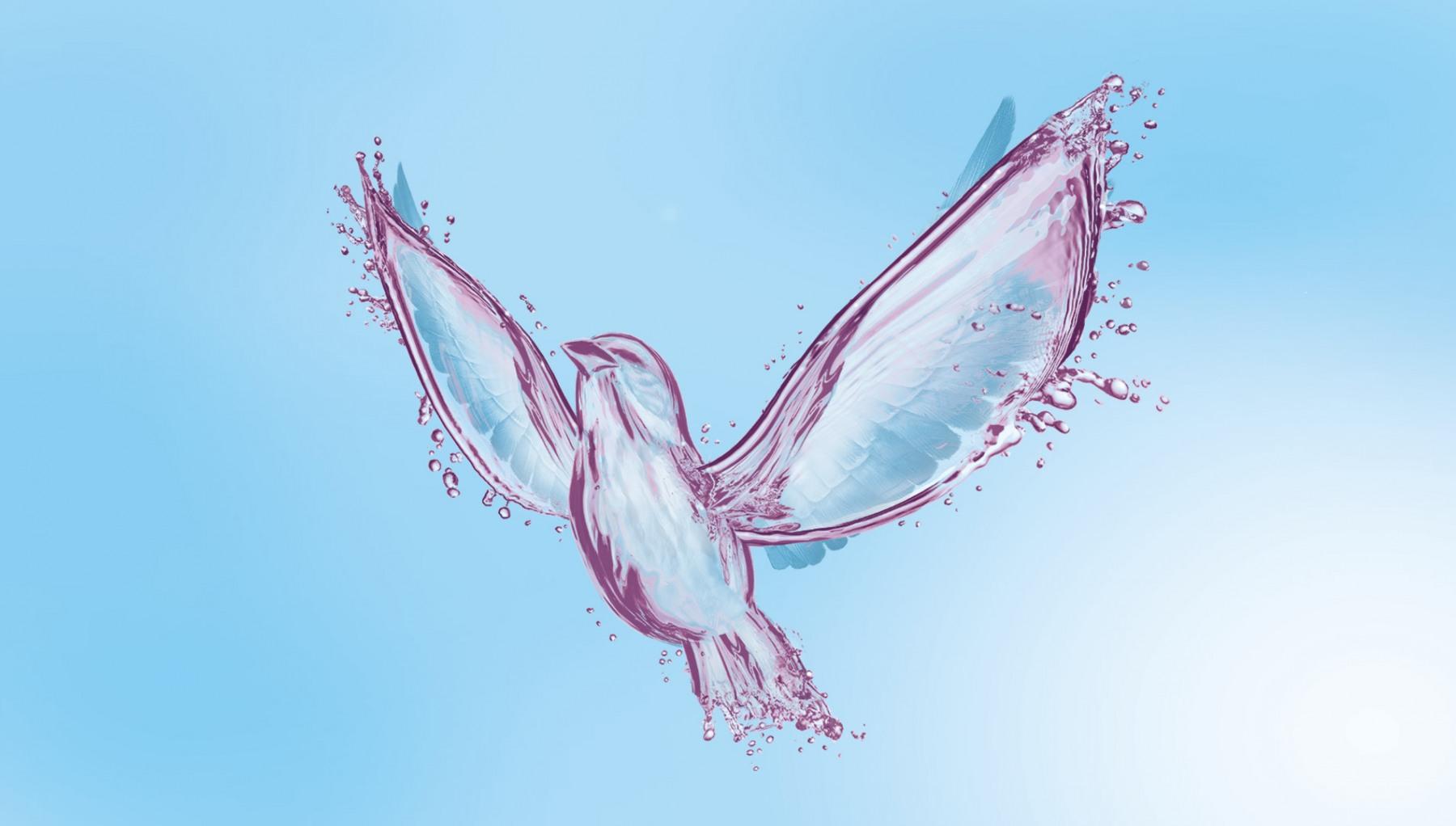 Rising Free Bird