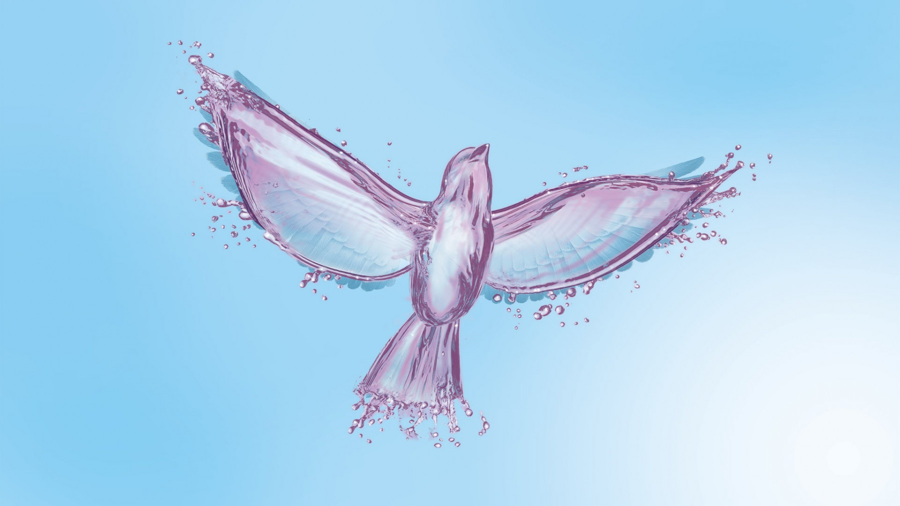 Uplifting Free Bird
