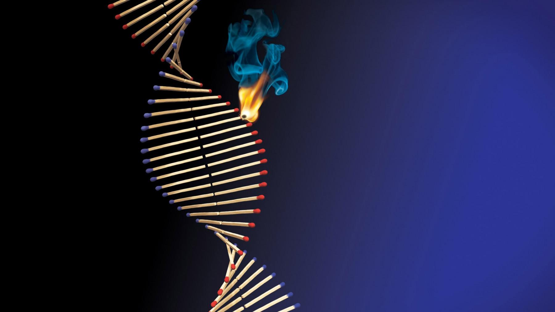MATCHSTICK DNA