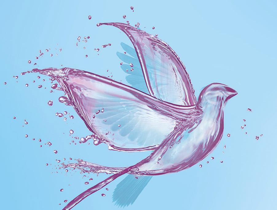 Free_Bird_Main_Detail.jpg